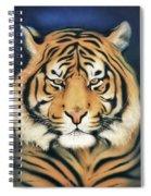 Tiger At Midnight Spiral Notebook