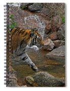 Tiger Crossing Poster Spiral Notebook