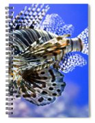 Tiger Fish Spiral Notebook