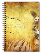 Tiger In The Sun Spiral Notebook