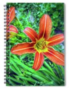 Tiger Lilies Spiral Notebook