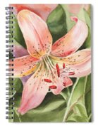Tiger Lily Watercolor By Irina Sztukowski Spiral Notebook