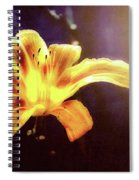 Tiger Lily On Waters Edge Spiral Notebook