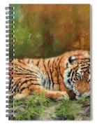 Tiger Repose Spiral Notebook