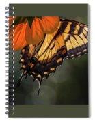 Tiger Swallowtail - 2 Spiral Notebook