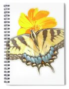 Tiger Swallowtail Butterfly, Cosmos Flower Spiral Notebook