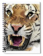 Tigers Pace Spiral Notebook