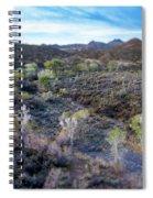 Tilt-shift Desert Wash Spiral Notebook