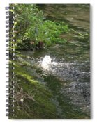 Timava's Spring I Spiral Notebook