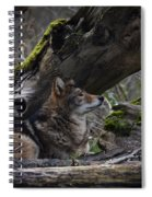 Timber Wolf Spiral Notebook