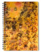 Time 4 Coffee Spiral Notebook