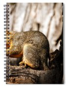 Time For A Peanut Spiral Notebook