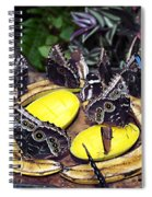 Time Out For Lunch Spiral Notebook