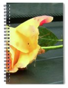 Time To Give A Rose - Yellow And Pink Rose - Clock Face Spiral Notebook