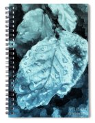 Time Travel Winter Leaves Spiral Notebook
