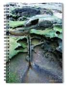 Time Washed Out Spiral Notebook