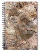 Timeless Male Spiral Notebook