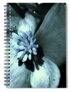 Calm And Cool Spiral Notebook
