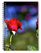 Timeline Spiral Notebook