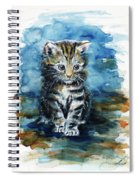 Timid Kitten Spiral Notebook