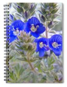 Tiny Blue Floral Spiral Notebook
