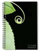 Tiny Curl Spiral Notebook