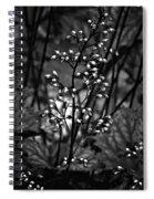 Tiny Dancer Bw Spiral Notebook