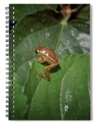 Tiny Escapee Spiral Notebook