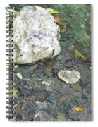 Tiny Fish In The Clear Water Spiral Notebook