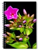 Tiny Joy Spiral Notebook