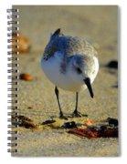 Tiny Matters Spiral Notebook
