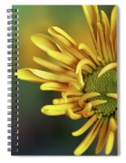 Tiny Miracles Spiral Notebook