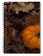 Tiny Pumpkin Spiral Notebook
