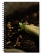 Tiny Succulent Spiral Notebook