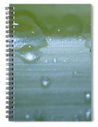 Tiny Water Drops On Stipe Spiral Notebook