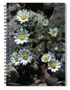 Tiny White Flowers In The Gravel Spiral Notebook