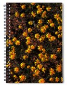 Tiny Yellow Flowrers On The Desert Floor Spiral Notebook