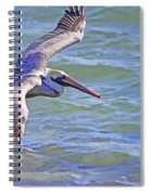 Tip Of The Wing Spiral Notebook