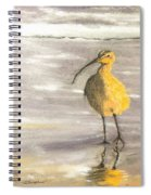 Tippy Toes  Spiral Notebook