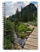Tipsoo Meadows #2 Spiral Notebook