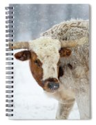 Tired Of Snow Spiral Notebook