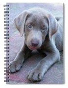 Tired Puppy Spiral Notebook