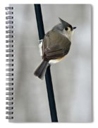 Titmouse In A Snowstorm Spiral Notebook