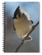 Titmouse Pause Spiral Notebook