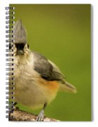 Titmouse Says Here Is Looking At You Spiral Notebook