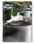 Titmouse Trickery Spiral Notebook