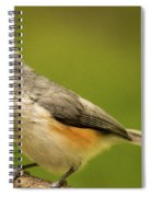 Titmouse With Bad Hairdo 2 Spiral Notebook