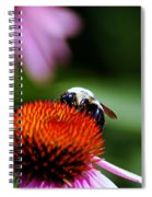 To Bee Or Not To Bee Spiral Notebook