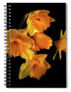 To Hold In Your Heart Spiral Notebook