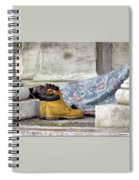To Sleep Perchance To Dream Spiral Notebook